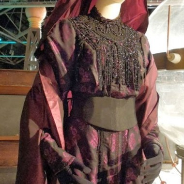 Madame Vastra's gown at a Doctor Who expo.
